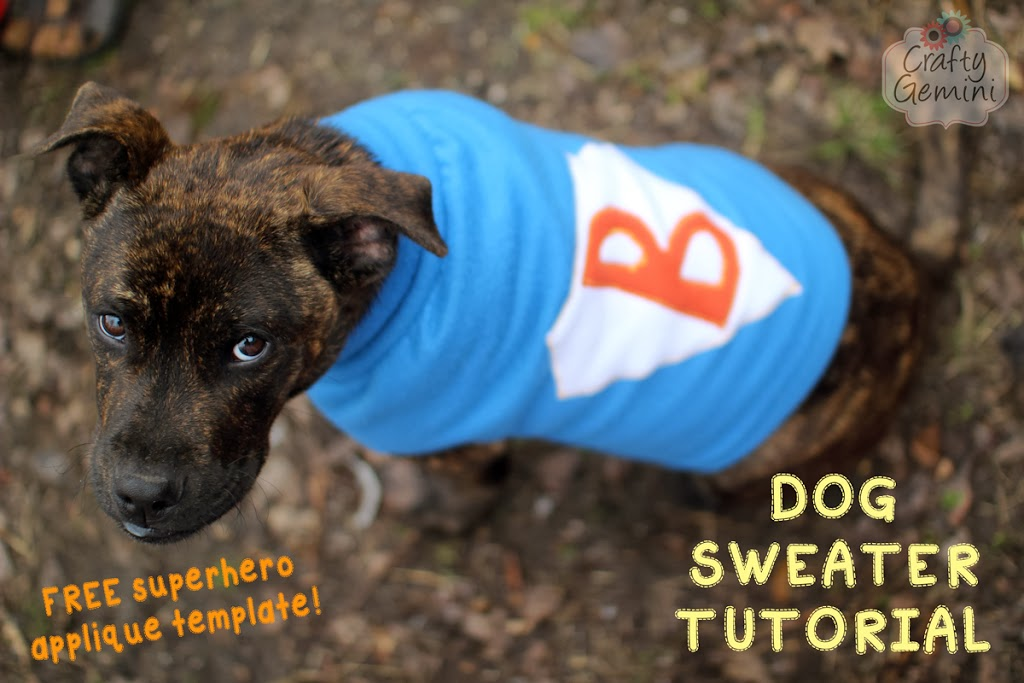 Dog Sweater Tutorial- DIY - Crafty Gemini