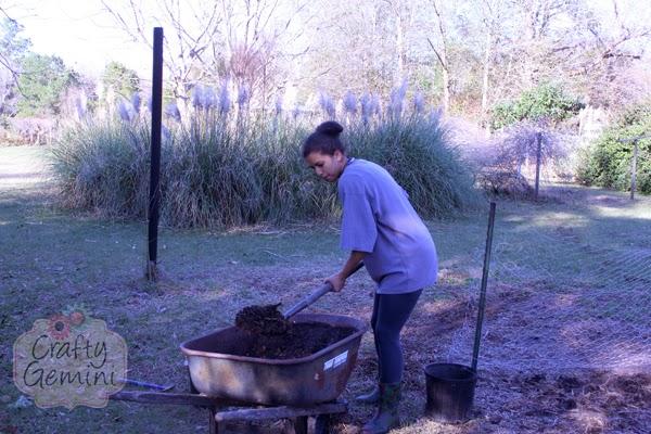spring garden compost