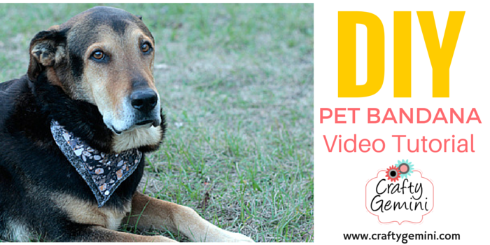 pet bandana video tutorial for dogs cats goats
