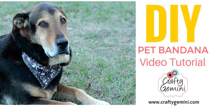 pet bandana video tutorial for dogs cats goats