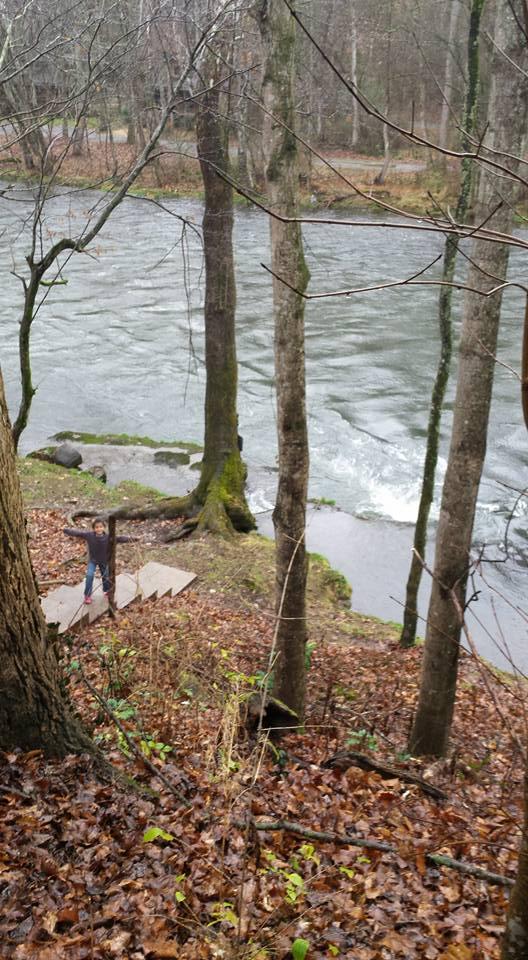 watauga river tennessee