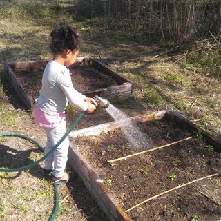 crafty gemini kids homeschool gardening organic unschool